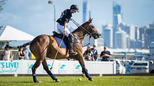 Exclusive tickets to the polo - save $66