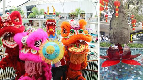 CHINESE NEW YEAR FESTIVITIES